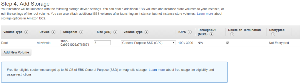 Launch Instance - Add Storage